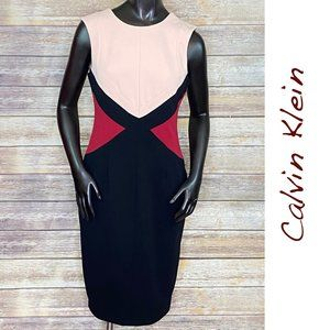 Calvin Klein Sleeveless Sheath Dress - Size 6
